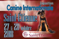 Exposition Canine Internationale Saint-Etienne