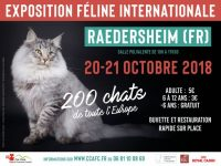 Exposition Féline Internationale de Raedersheim