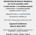 L'Exposition Féline Internationale de Boulay-Moselle - Novembre 2018